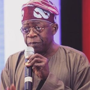 We Don't See Tinubu As One Of Yoruba Defenders – Afenifere