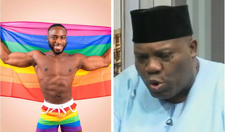 I Hope One Day Homosexuality Can Be Decriminalised In Nigeria – Ex Presidential Spokesperson Doyin Okupe's Son, Bolu Says