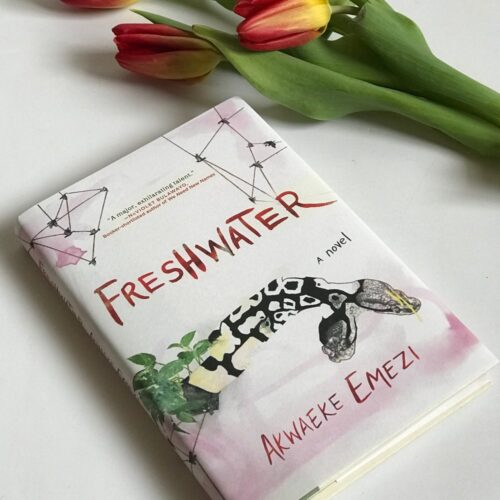 Freshwater; Between The Gods And Mortal Bodies (A Book Review)
