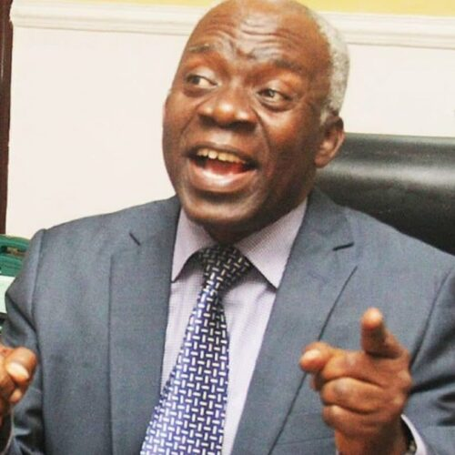 Falana Seeks Arraignment Of Detained 800 Boko Haram Suspects